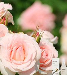 6种不同肤质最需要的粉底