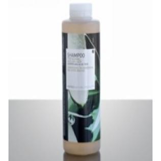 珂诺诗杜松橄榄树洗发香波