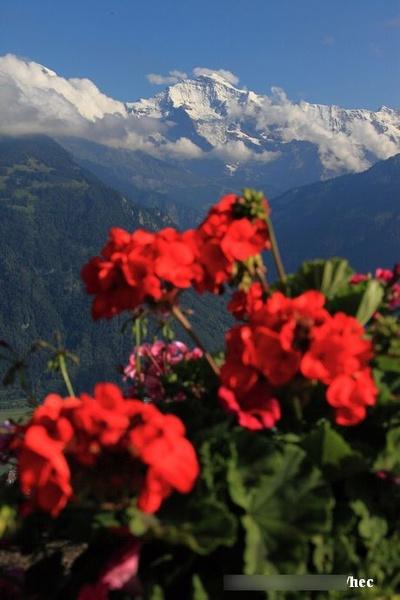 人间天堂瑞士 一生必去的地方
