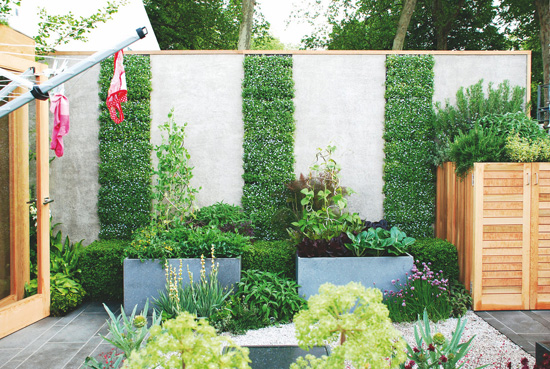 花台设计图片 庭院