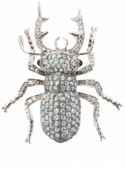 蜘蛛珠宝手绘图