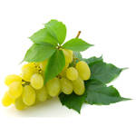 葡萄减肥法