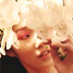 香氛中的鲜花物语