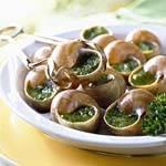 蜗牛与螺的美食