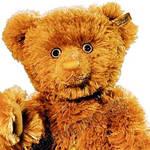 黄金泰迪熊