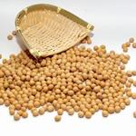 黄豆食谱减肥不减胸