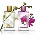 奢侈品香水产业的内在
