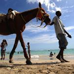 加勒比海旅行地