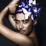 韵意撩人 拉丁王子的蝴蝶梦